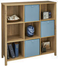 Premium Adjustable 38 9 Cube Unit Bookcase