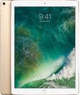 64GB Apple 12.9 WiFi iPad Pro (2017 Model)